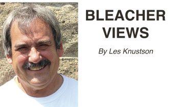 Bleacher Views by Les Knutson